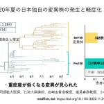 日本における新型コロナウイルス・メインプロテアーゼ(3CLpro)変異株の消長と新薬開発への手がかり
