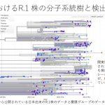 免疫逃避変異E484Kを含むR1株の国内分布