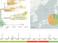 関東圏における新型コロナウィルス変異分子系統樹情報(慶應義塾大学分析分)